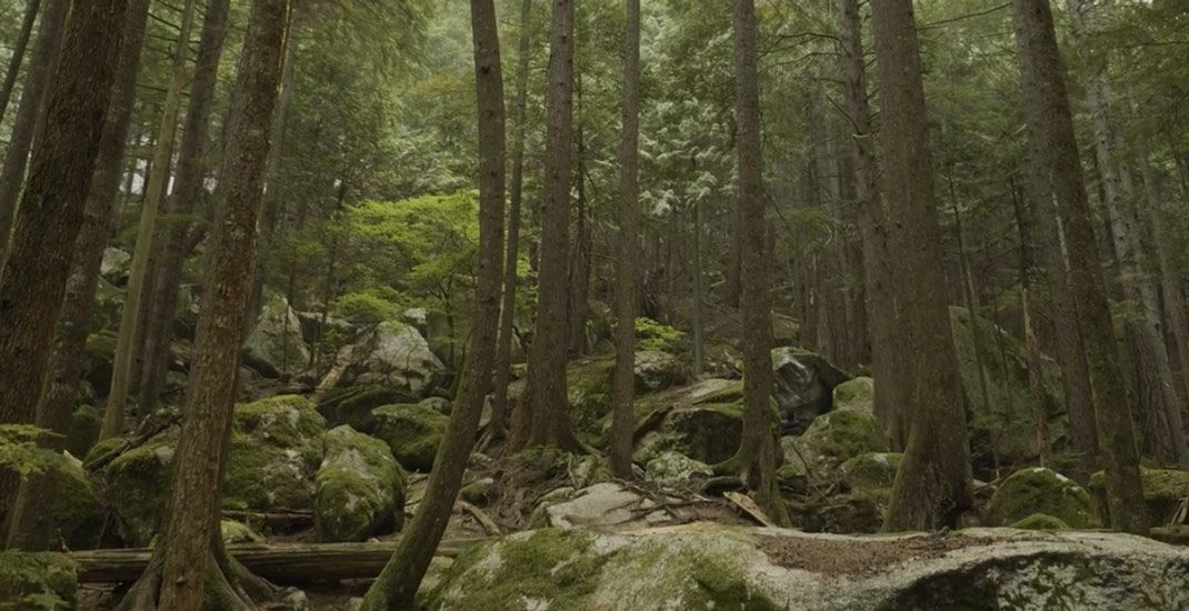 Video of the Week - Squamish